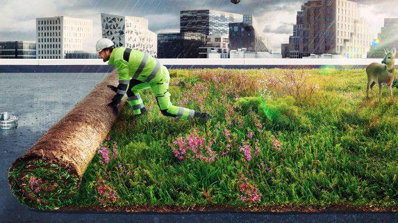 Blågrønne tak mot ekstrem-nedbør