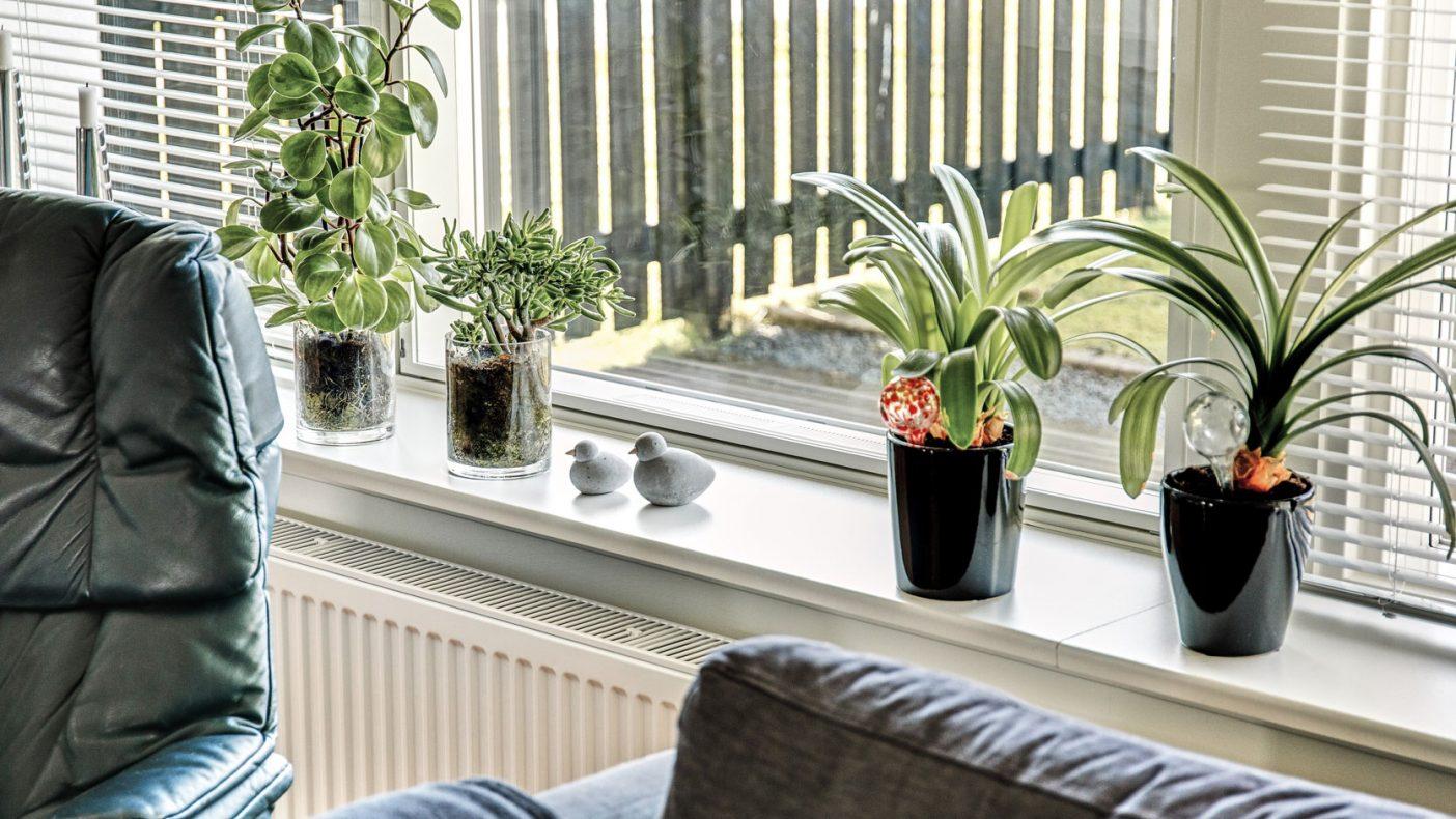 Bruk av ventilasjon ved vinduene er en løsning som kan vinne pris i Danmark.